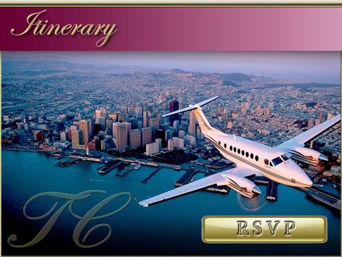 VIP Travel Companion